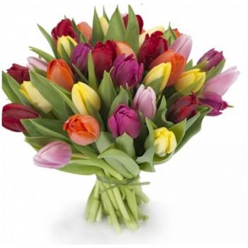 """Букет из разноцветных тюльпанов """"Красна девица"""""""