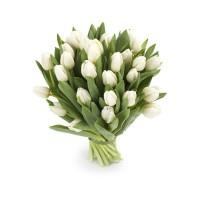 """Букет из 27 белых тюльпанов - """"Воздушный"""""""