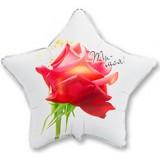 Шар Звезда, Ты моя