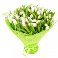 """Букет из 55 белых тюльпанов - """"Вдохновение"""""""